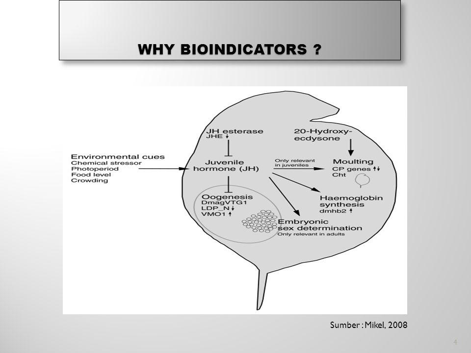 WHY BIOINDICATORS ? Sumber : Mikel, 2008 4