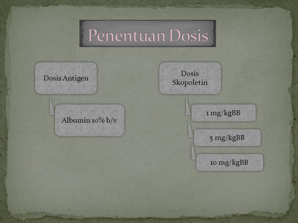 Dosis Antigen Albumin 10% b/v Dosis Skopoletin 1 mg/kgBB 5 mg/kgBB 10 mg/kgBB