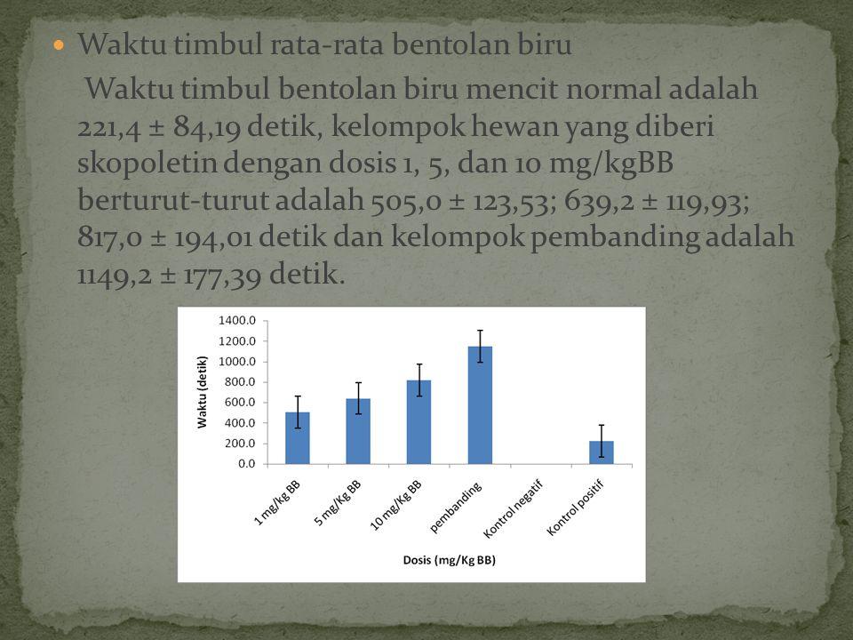 Waktu timbul rata-rata bentolan biru Waktu timbul bentolan biru mencit normal adalah 221,4 ± 84,19 detik, kelompok hewan yang diberi skopoletin dengan dosis 1, 5, dan 10 mg/kgBB berturut-turut adalah 505,0 ± 123,53; 639,2 ± 119,93; 817,0 ± 194,01 detik dan kelompok pembanding adalah 1149,2 ± 177,39 detik.