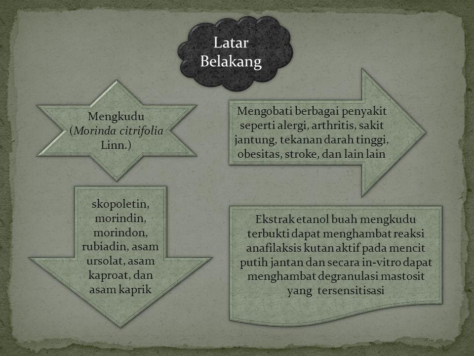 Latar Belakang Mengkudu (Morinda citrifolia Linn.) Mengobati berbagai penyakit seperti alergi, arthritis, sakit jantung, tekanan darah tinggi, obesita