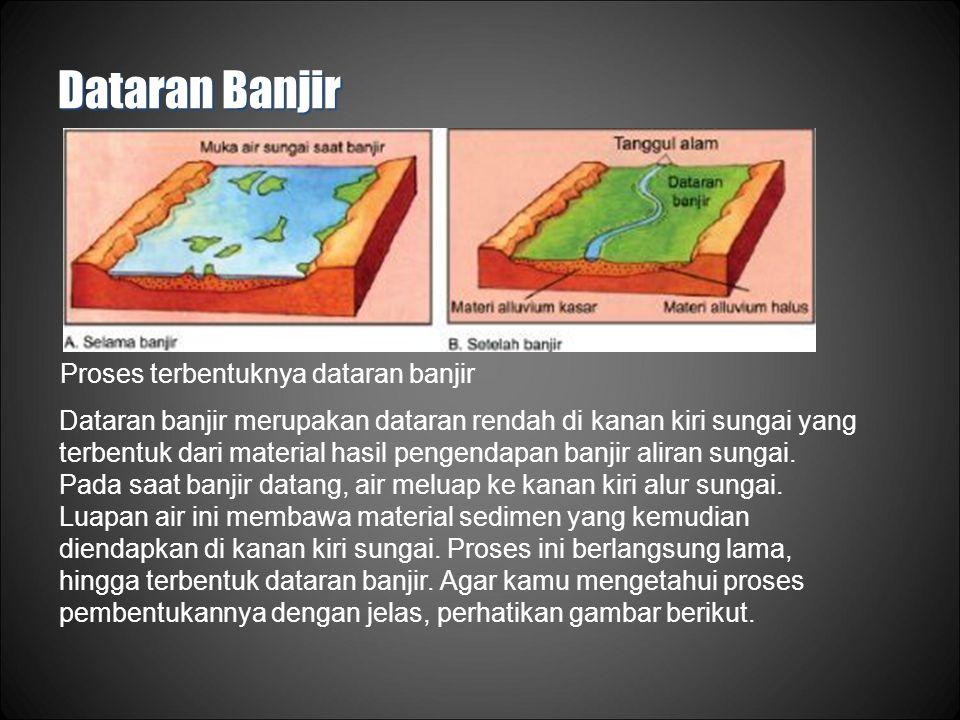 Dataran Banjir Proses terbentuknya dataran banjir Dataran banjir merupakan dataran rendah di kanan kiri sungai yang terbentuk dari material hasil pengendapan banjir aliran sungai.