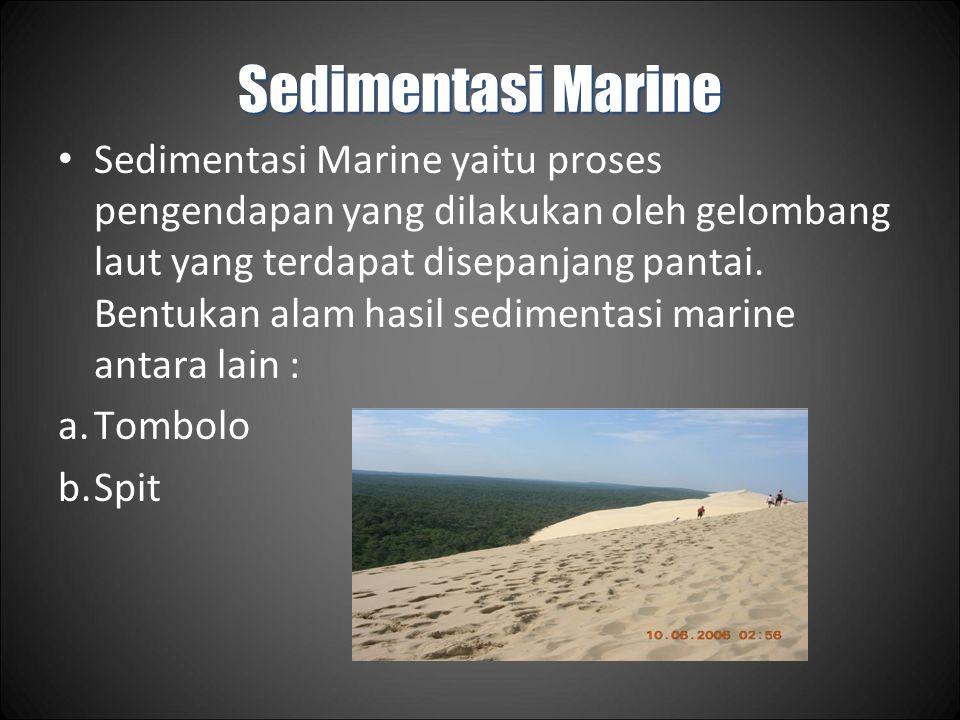 Sedimentasi Marine Sedimentasi Marine yaitu proses pengendapan yang dilakukan oleh gelombang laut yang terdapat disepanjang pantai.