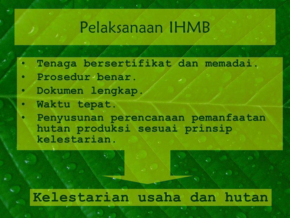 Pelaksanaan IHMB Tenaga bersertifikat dan memadai.