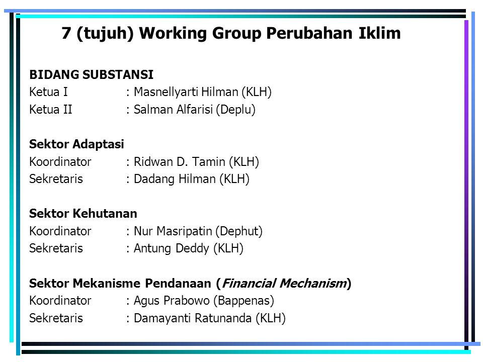 7 (tujuh) Working Group Perubahan Iklim BIDANG SUBSTANSI Ketua I : Masnellyarti Hilman (KLH) Ketua II: Salman Alfarisi (Deplu) Sektor Adaptasi Koordin