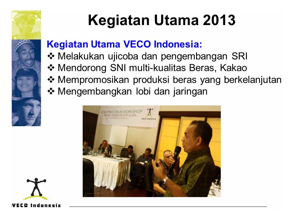 Kegiatan Utama 2013 Kegiatan Utama VECO Indonesia:  Melakukan ujicoba dan pengembangan SRI  Mendorong SNI multi-kualitas Beras, Kakao  Mempromosikan produksi beras yang berkelanjutan  Mengembangkan lobi dan jaringan