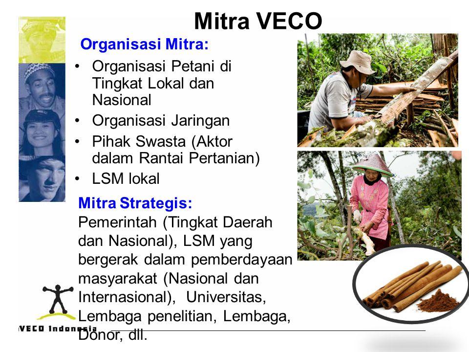 Mitra VECO Organisasi Mitra: Organisasi Petani di Tingkat Lokal dan Nasional Organisasi Jaringan Pihak Swasta (Aktor dalam Rantai Pertanian) LSM lokal