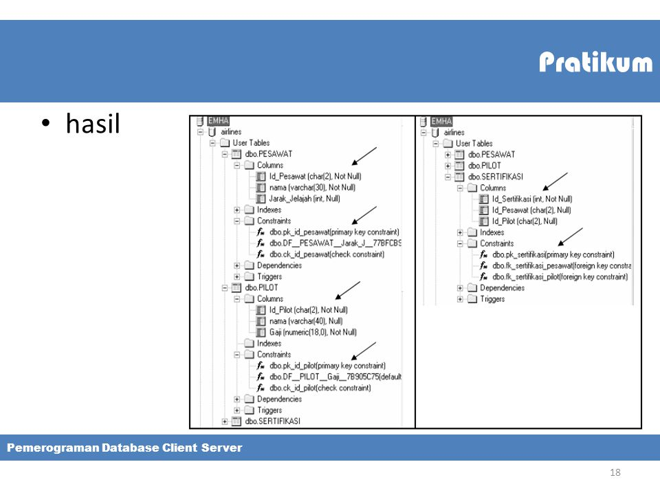 Pratikum hasil Pemerograman Database Client Server 18