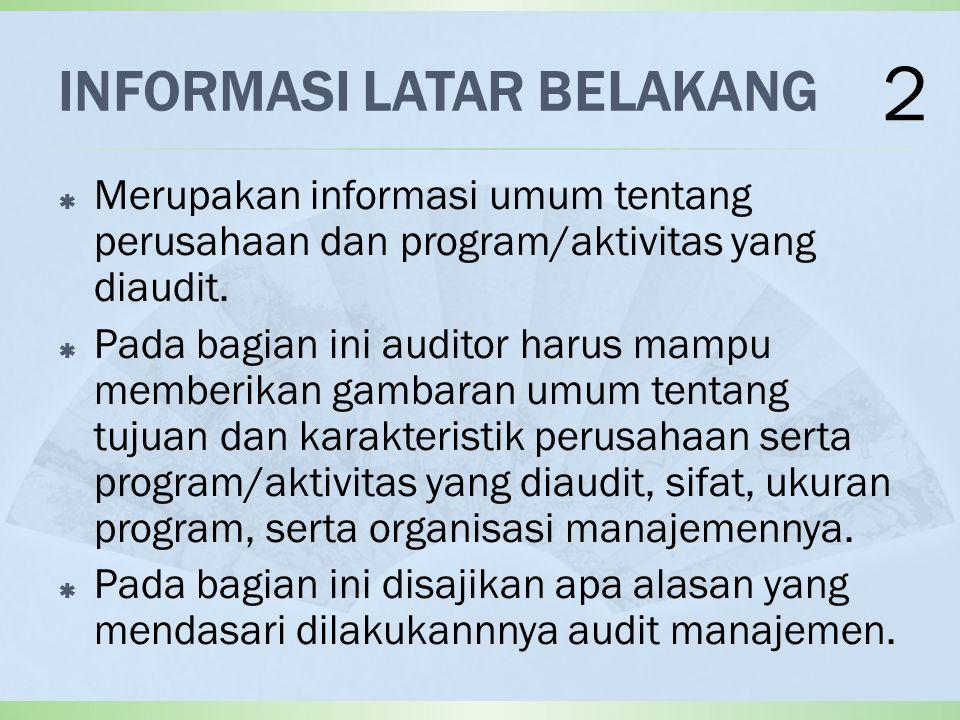 INFORMASI LATAR BELAKANG  Merupakan informasi umum tentang perusahaan dan program/aktivitas yang diaudit.