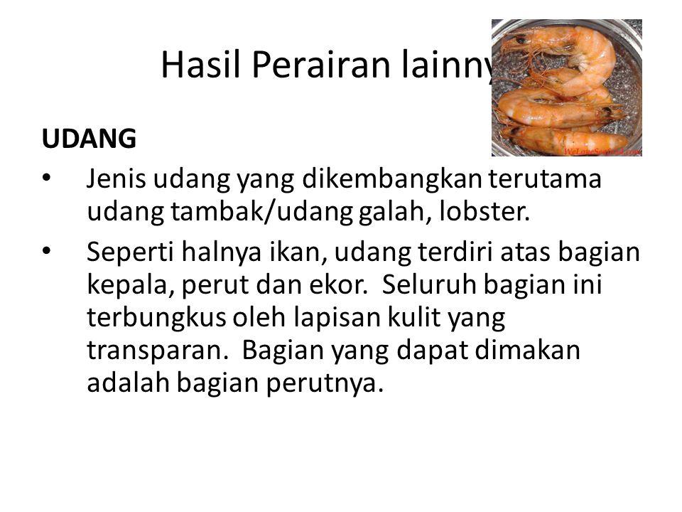 Hasil Perairan lainnya UDANG Jenis udang yang dikembangkan terutama udang tambak/udang galah, lobster.