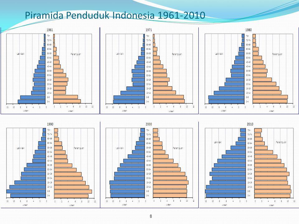 Piramida Penduduk Indonesia 1961-2010 8