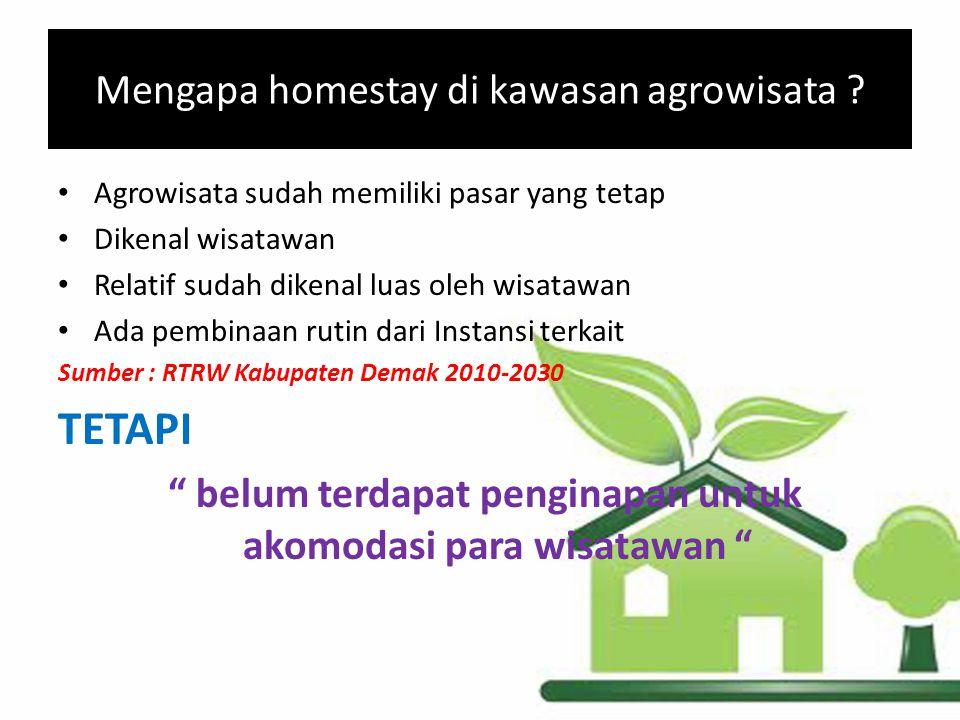 Mengapa homestay di kawasan agrowisata ? Agrowisata sudah memiliki pasar yang tetap Dikenal wisatawan Relatif sudah dikenal luas oleh wisatawan Ada pe