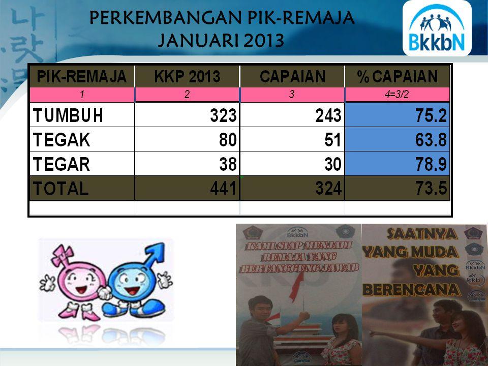 PERKEMBANGAN PIK-REMAJA JANUARI 2013