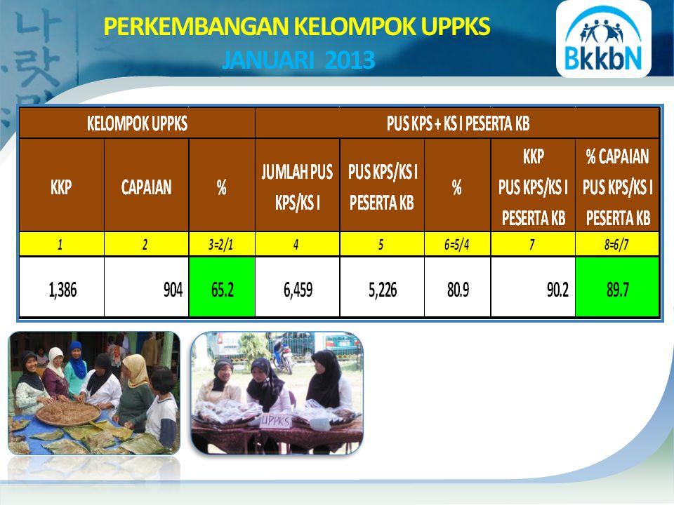 PERKEMBANGAN KELOMPOK UPPKS JANUARI 2013