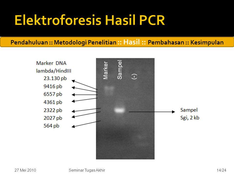 27 Mei 201014/24 Pendahuluan :: Metodologi Penelitian :: Hasil :: Pembahasan :: Kesimpulan Seminar Tugas Akhir Marker Sampel (-)