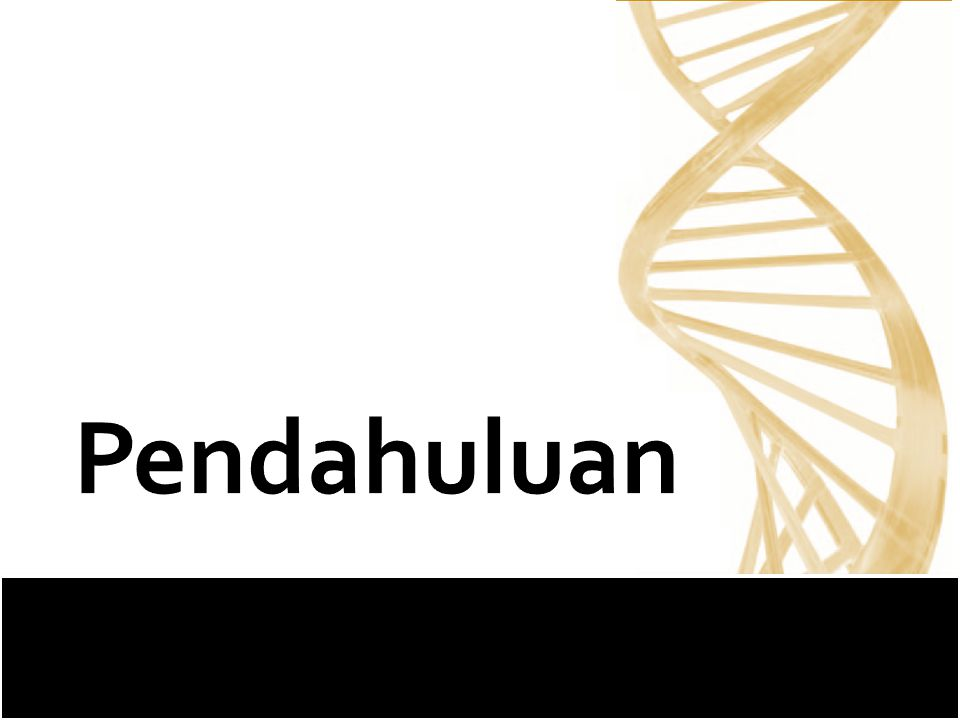 427 Mei 2010 Pendahuluan :: Metodologi Penelitian :: Hasil :: Pembahasan :: Kesimpulan  Laju Mutasi mtDNA 10 x lebih cepat dibandingkan DNA inti  mitochondrial disease  Fokus penelitian merupakan gen 12S rRNA Seminar Tugas Akhir
