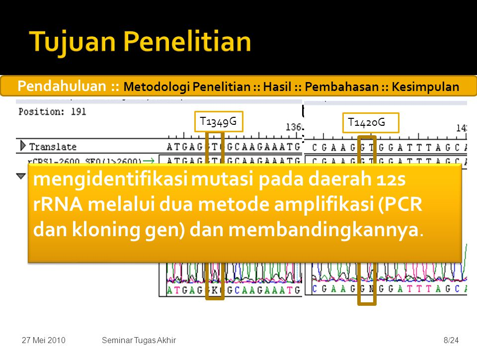  Sampel urin penderita diabetes merupakan sampel yang tidak positif PASA (PCR Alelle Specific Alignment) A3243 G  Penelitian sebelumnya (Maksum, 2009) menduga adanya heteroplasmi pada sampel di daerah gen 12s rRNA 27 Mei 20108/24Seminar Tugas Akhir T1420G T1349G mengidentifikasi mutasi pada daerah 12s rRNA melalui dua metode amplifikasi (PCR dan kloning gen) dan membandingkannya.