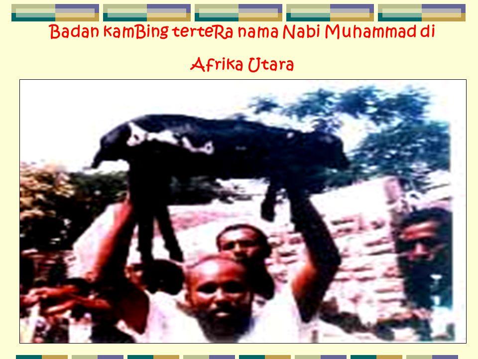 Badan kamBing terteRa nama Nabi Muhammad di Afrika Utara
