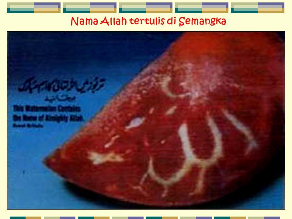 Nama Allah tertulis di Semangka