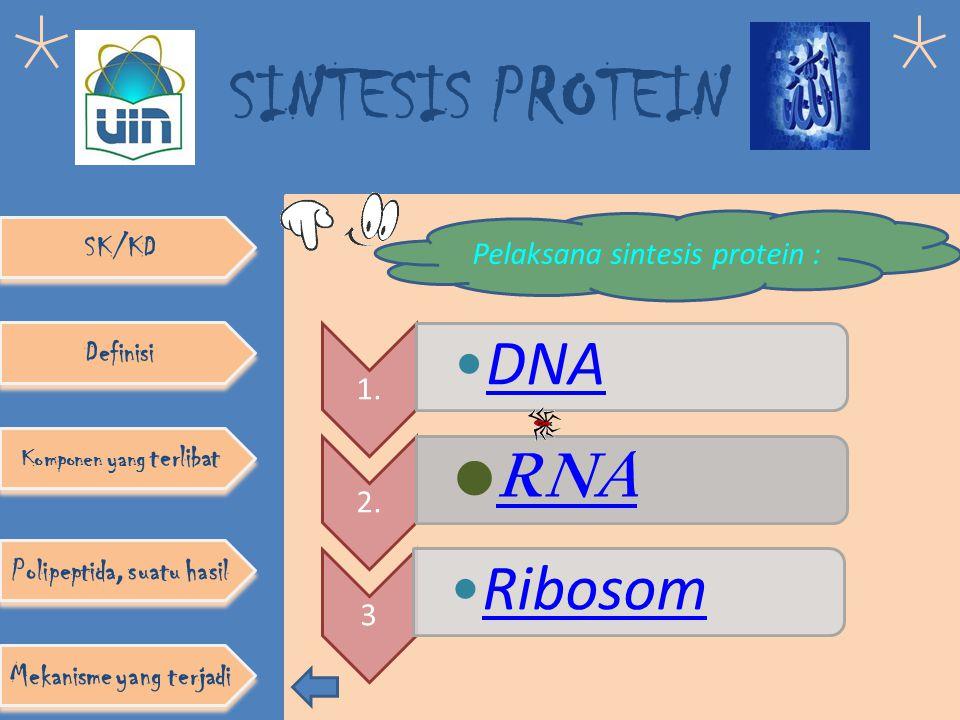 SINTESIS PROTEIN Skema Dogma Sentral SK/KD Definisi Komponen yang terlibat Polipeptida, suatu hasil Mekanisme yang terjadi DNA transkripsi RNAprotein