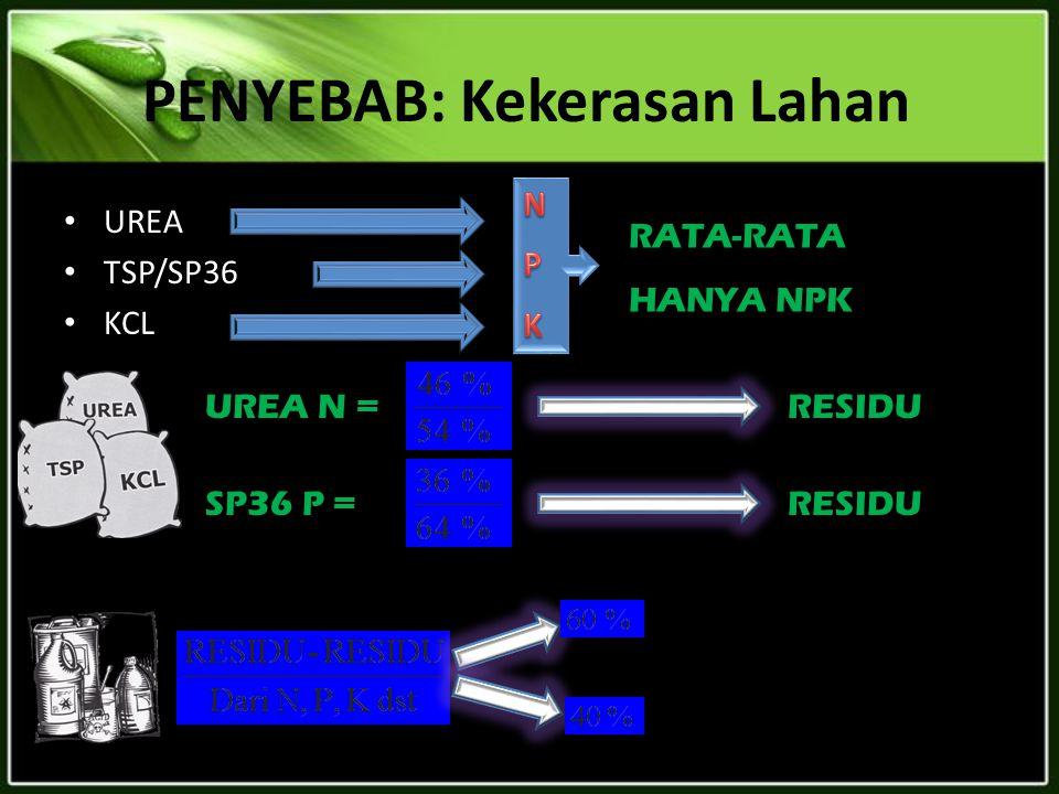 PENYEBAB: Kekerasan Lahan UREA TSP/SP36 KCL RATA-RATA HANYA NPK UREA N =RESIDU SP36 P =RESIDU