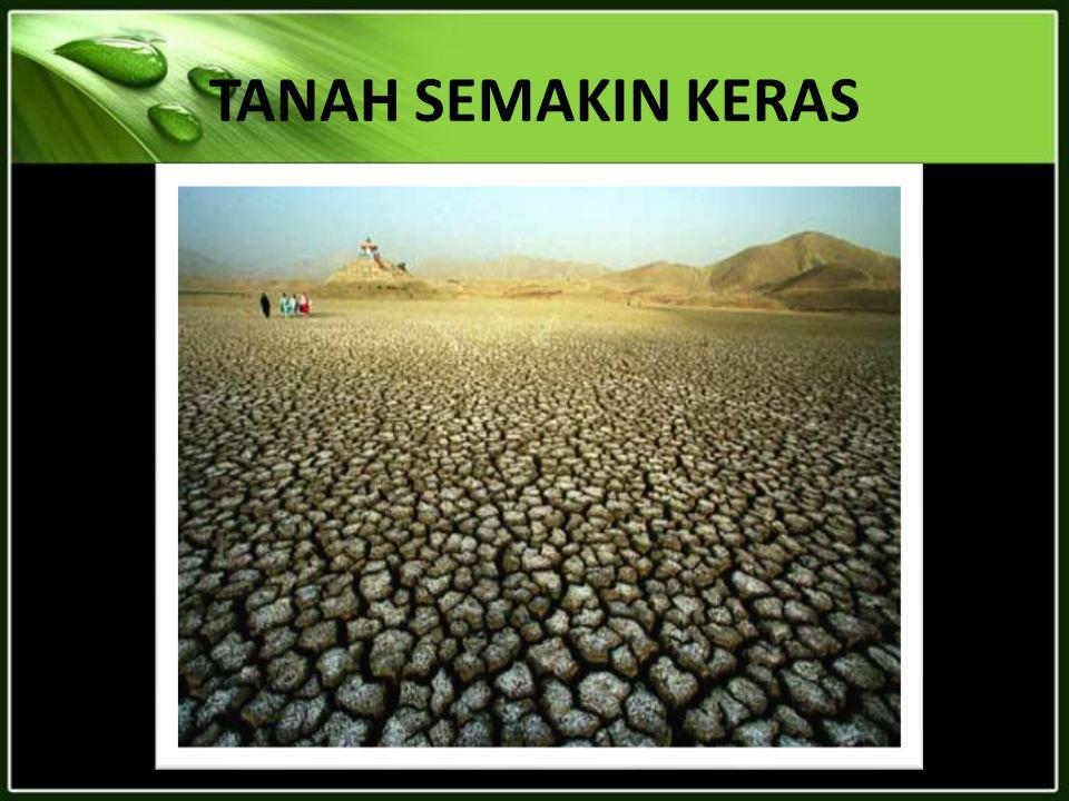 TANAH SEMAKIN KERAS