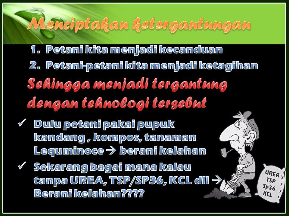 TanamanDuluSekarang PadiDiambil GabahDiambil Gabah & Batang Padi (Jerami) JagungDiambil JagungDiambil jagung & Daun jagung (Tebon)