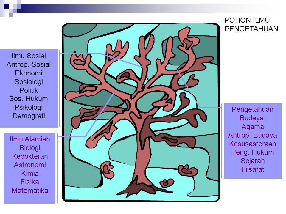 Pokok Bahasan IBD 8 pokok bahasan yang menjadi issue sentral IBD: 1.