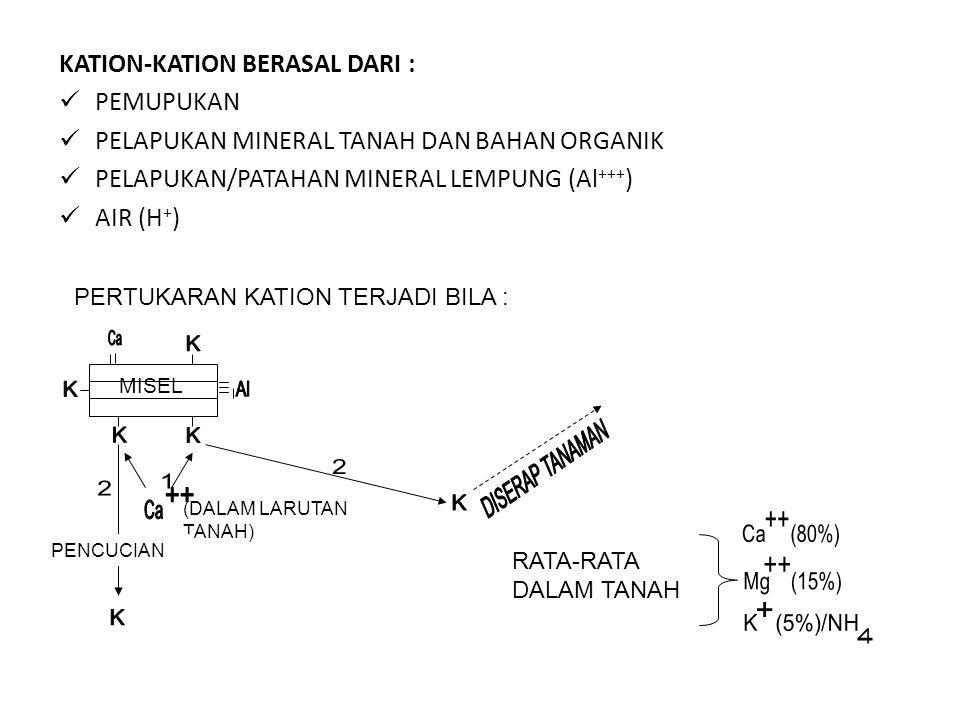 KATION-KATION BERASAL DARI : PEMUPUKAN PELAPUKAN MINERAL TANAH DAN BAHAN ORGANIK PELAPUKAN/PATAHAN MINERAL LEMPUNG (Al +++ ) AIR (H + ) PERTUKARAN KAT