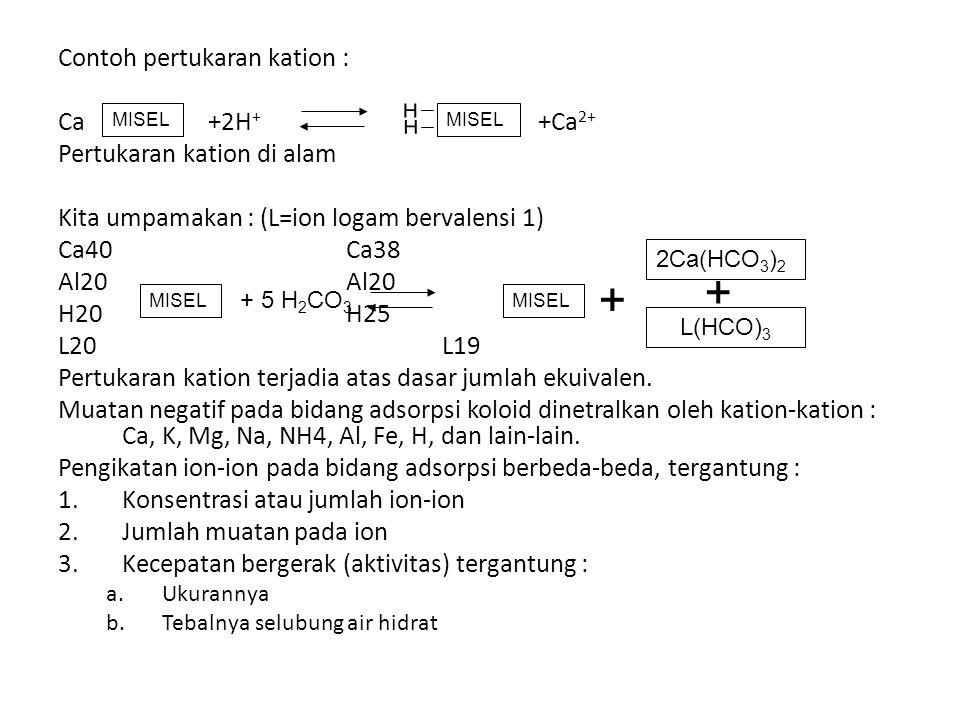 Contoh pertukaran kation : Ca +2H + +Ca 2+ Pertukaran kation di alam Kita umpamakan : (L=ion logam bervalensi 1) Ca40Ca38Al20 H20H25 L20L19 Pertukaran