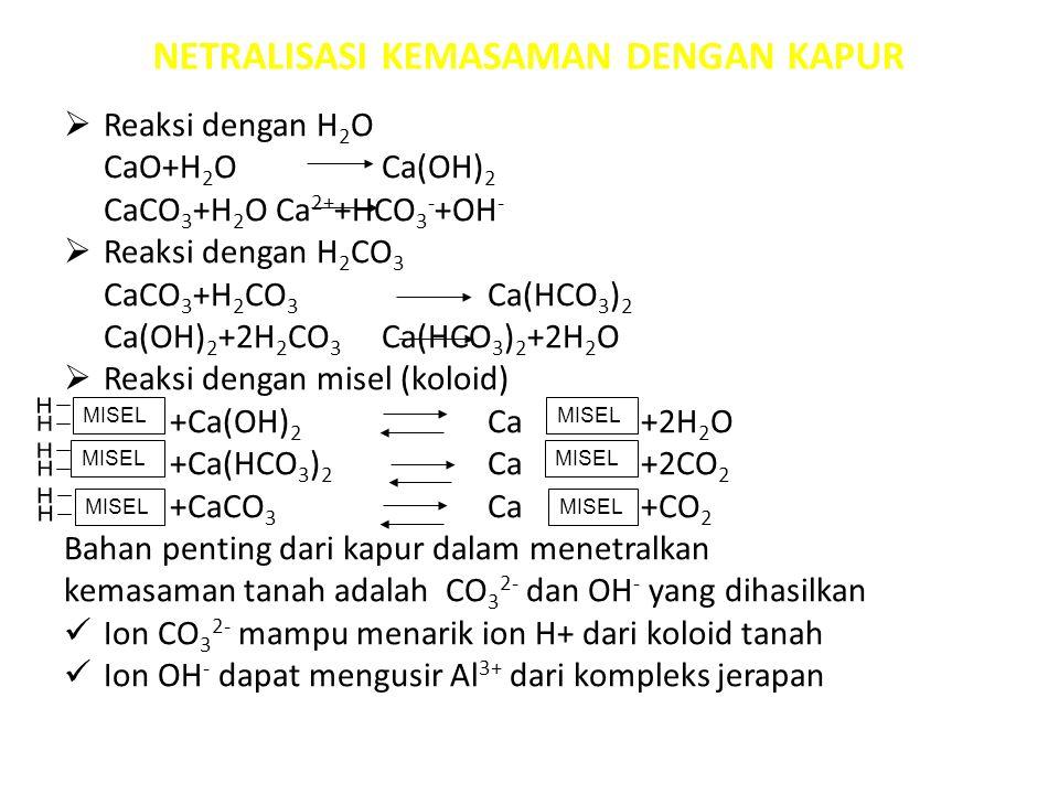 NETRALISASI KEMASAMAN DENGAN KAPUR  Reaksi dengan H 2 O CaO+H 2 OCa(OH) 2 CaCO 3 +H 2 OCa 2+ +HCO 3 - +OH -  Reaksi dengan H 2 CO 3 CaCO 3 +H 2 CO 3