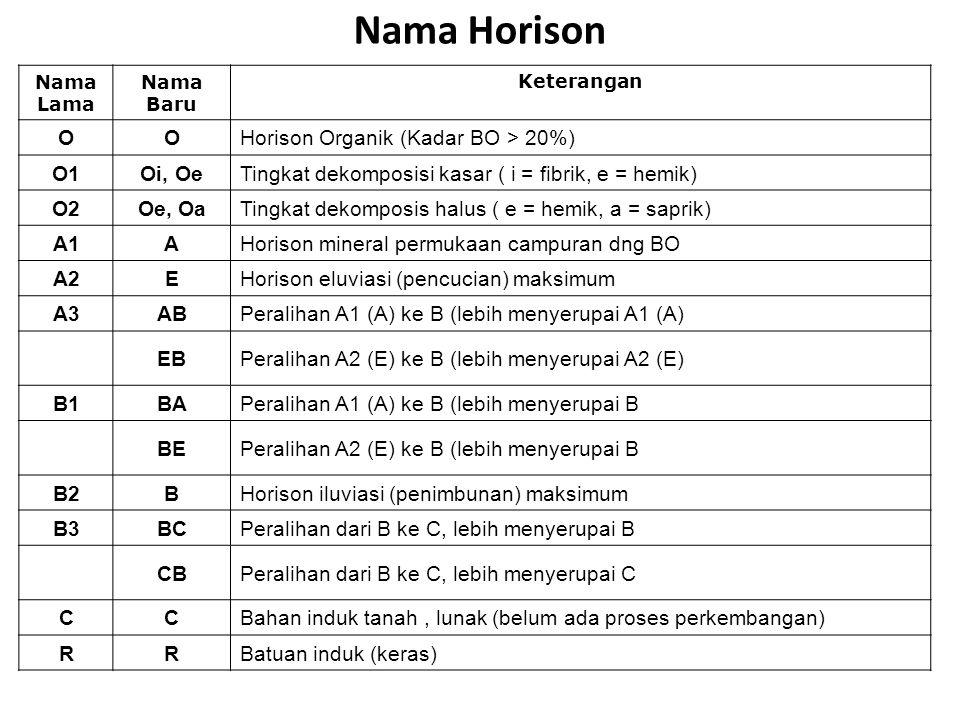 Nama Horison Nama Lama Nama Baru Keterangan OOHorison Organik (Kadar BO > 20%) O1Oi, OeTingkat dekomposisi kasar ( i = fibrik, e = hemik) O2Oe, OaTing
