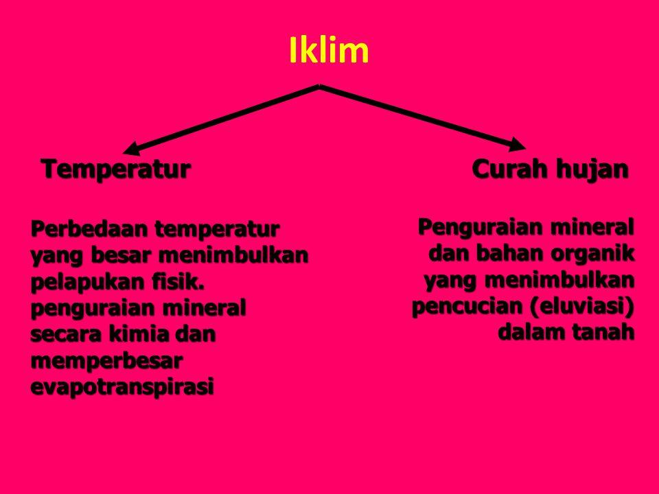 Iklim Temperatur Curah hujan Perbedaan temperatur yang besar menimbulkan pelapukan fisik. penguraian mineral secara kimia dan memperbesar evapotranspi