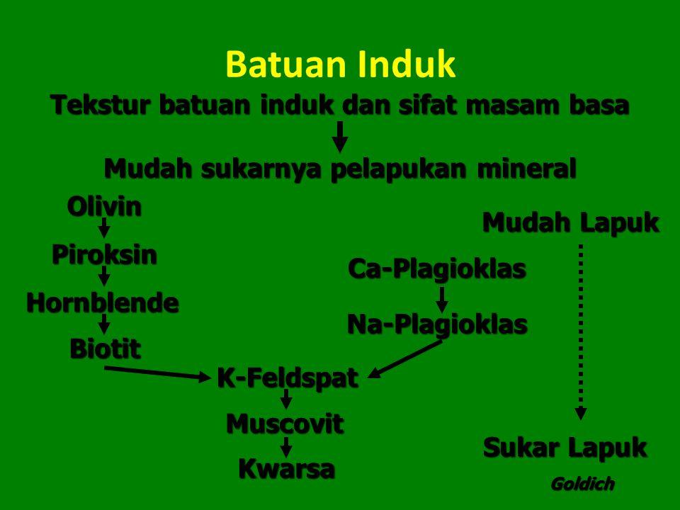 Batuan Induk Tekstur batuan induk dan sifat masam basa Mudah sukarnya pelapukan mineral Olivin Ca-Plagioklas Na-Plagioklas K-Feldspat Muscovit Kwarsa