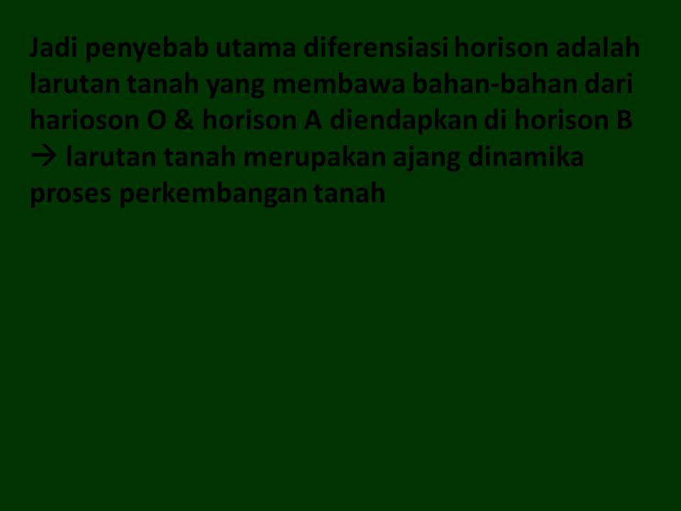 Jadi penyebab utama diferensiasi horison adalah larutan tanah yang membawa bahan-bahan dari harioson O & horison A diendapkan di horison B  larutan t