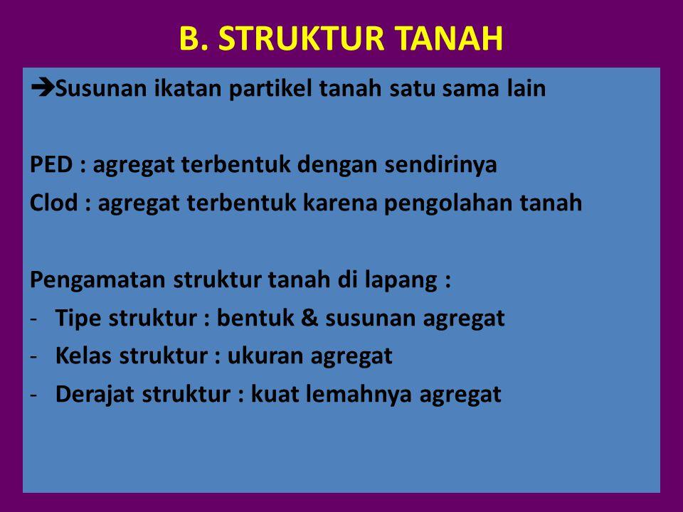 B. STRUKTUR TANAH  Susunan ikatan partikel tanah satu sama lain PED : agregat terbentuk dengan sendirinya Clod : agregat terbentuk karena pengolahan