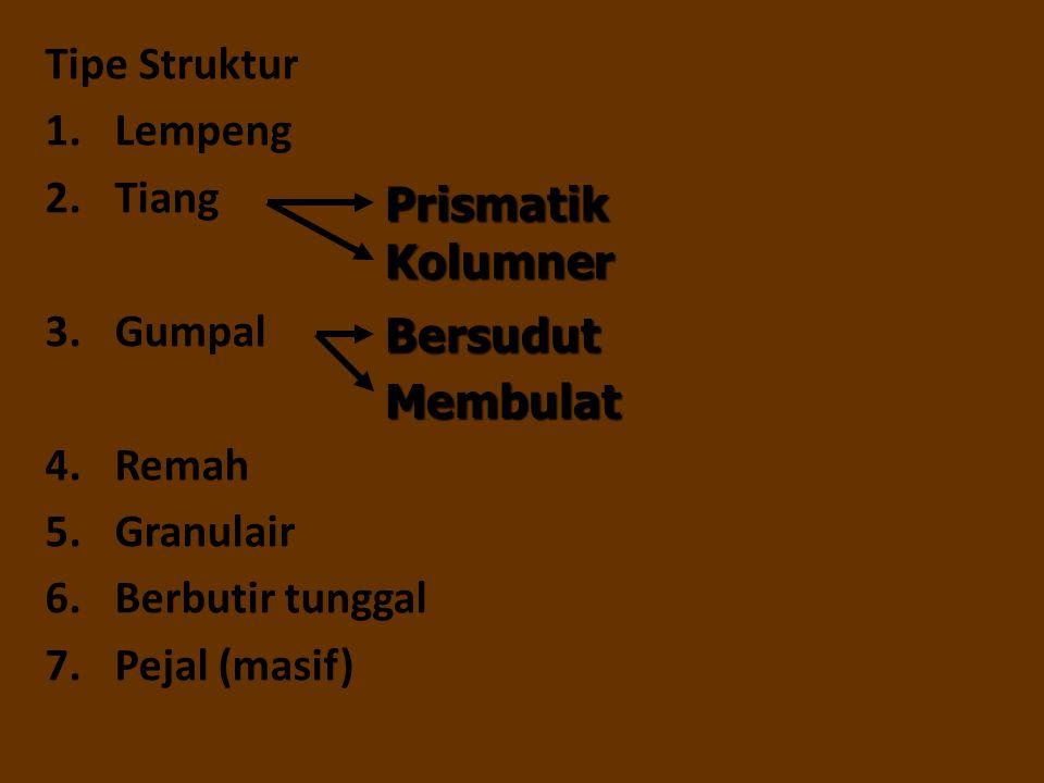 Tipe Struktur 1.Lempeng 2.Tiang 3.Gumpal 4.Remah 5.Granulair 6.Berbutir tunggal 7.Pejal (masif) Prismatik Kolumner Bersudut Membulat