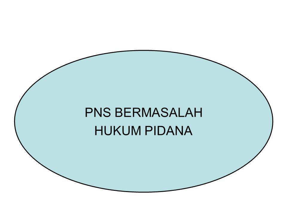 PNS BERMASALAH HUKUM PIDANA