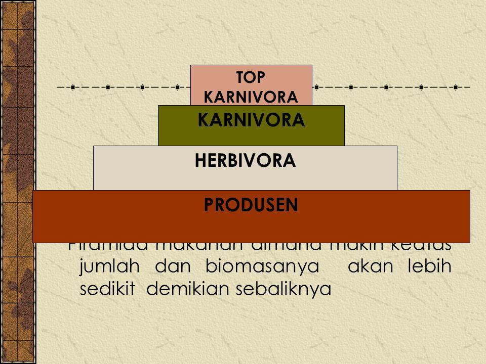 Piramida makanan dimana makin keatas jumlah dan biomasanya akan lebih sedikit demikian sebaliknya HERBIVORA KARNIVORA TOP KARNIVORA PRODUSEN