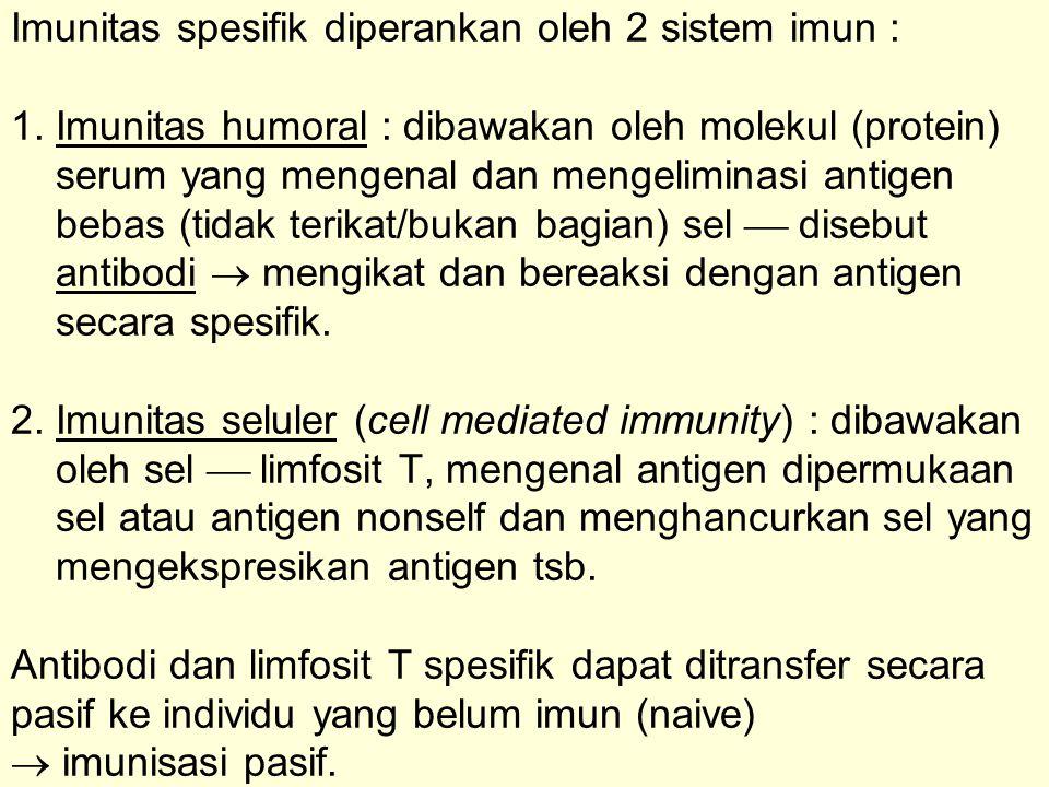 Imunitas spesifik diperankan oleh 2 sistem imun : 1. Imunitas humoral : dibawakan oleh molekul (protein) serum yang mengenal dan mengeliminasi antigen