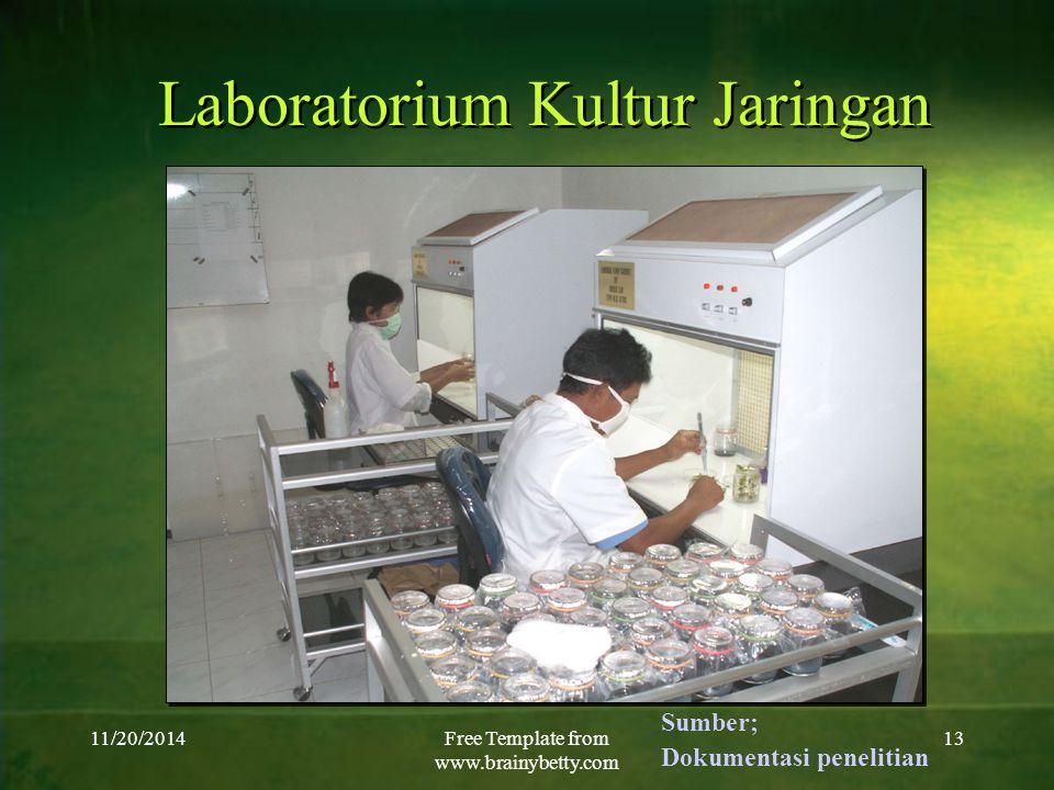 11/20/2014Free Template from www.brainybetty.com 13 Laboratorium Kultur Jaringan Sumber; Dokumentasi penelitian