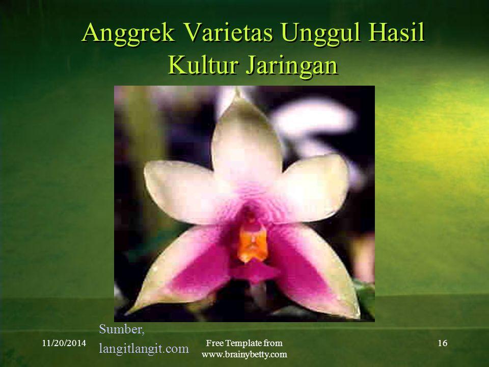 11/20/2014Free Template from www.brainybetty.com 16 Anggrek Varietas Unggul Hasil Kultur Jaringan Sumber, langitlangit.com