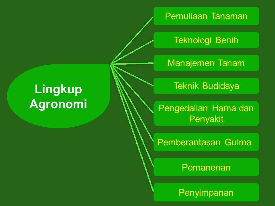 Lingkup Agronomi Teknologi Benih Pemuliaan Tanaman Manajemen Tanam Teknik Budidaya Pengedalian Hama dan Penyakit Pemberantasan Gulma Pemanenan Penyimpanan