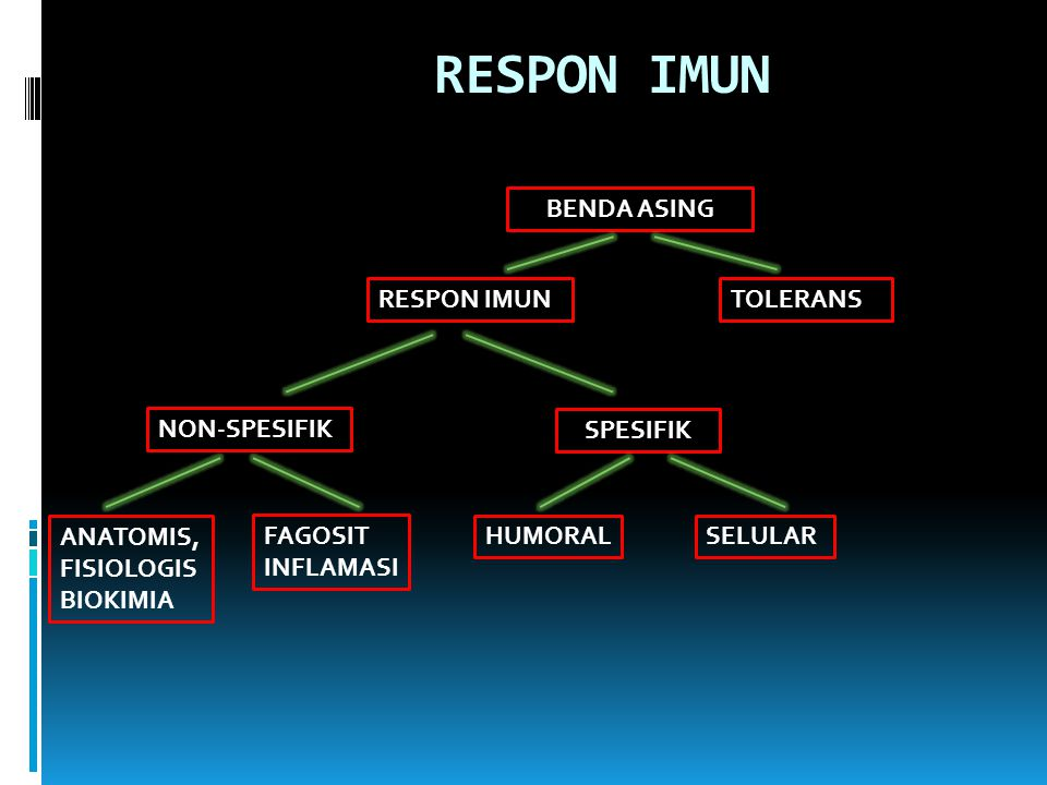 RESPON IMUN BENDA ASING RESPON IMUNTOLERANS NON-SPESIFIK SPESIFIK ANATOMIS, FISIOLOGIS BIOKIMIA HUMORALSELULAR FAGOSIT INFLAMASI