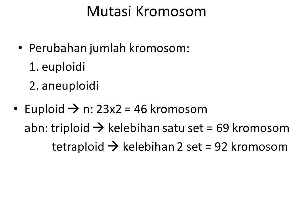 Mutasi Kromosom Perubahan jumlah kromosom: 1. euploidi 2. aneuploidi Euploid  n: 23x2 = 46 kromosom abn: triploid  kelebihan satu set = 69 kromosom