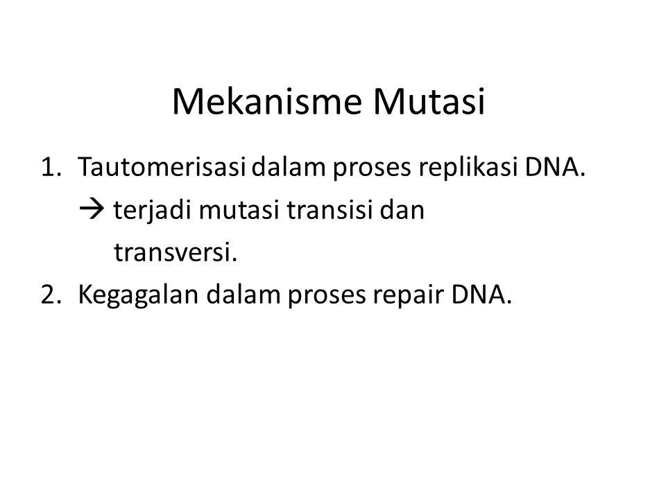 Mekanisme Mutasi 1.Tautomerisasi dalam proses replikasi DNA.  terjadi mutasi transisi dan transversi. 2.Kegagalan dalam proses repair DNA.