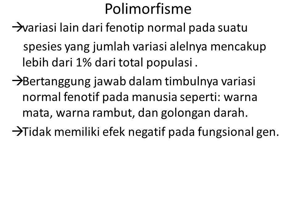 Polimorfisme  variasi lain dari fenotip normal pada suatu spesies yang jumlah variasi alelnya mencakup lebih dari 1% dari total populasi.  Bertanggu