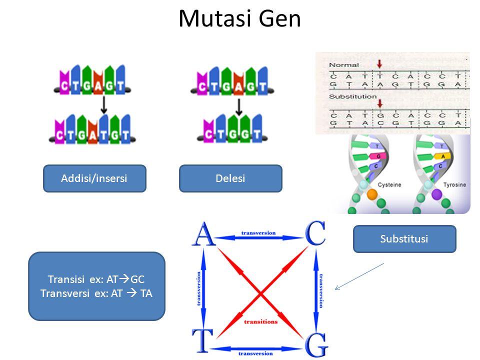 Mutasi Gen Addisi/insersiDelesi Substitusi Transisi ex: AT  GC Transversi ex: AT  TA
