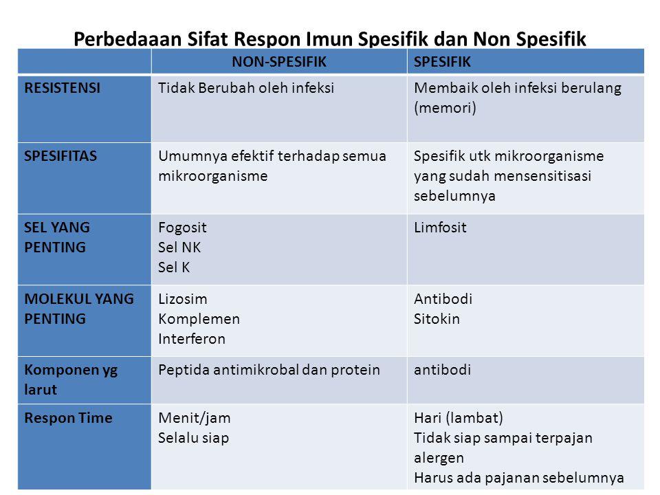 Perbedaaan Sifat Respon Imun Spesifik dan Non Spesifik NON-SPESIFIKSPESIFIK RESISTENSITidak Berubah oleh infeksiMembaik oleh infeksi berulang (memori) SPESIFITASUmumnya efektif terhadap semua mikroorganisme Spesifik utk mikroorganisme yang sudah mensensitisasi sebelumnya SEL YANG PENTING Fogosit Sel NK Sel K Limfosit MOLEKUL YANG PENTING Lizosim Komplemen Interferon Antibodi Sitokin Komponen yg larut Peptida antimikrobal dan proteinantibodi Respon TimeMenit/jam Selalu siap Hari (lambat) Tidak siap sampai terpajan alergen Harus ada pajanan sebelumnya