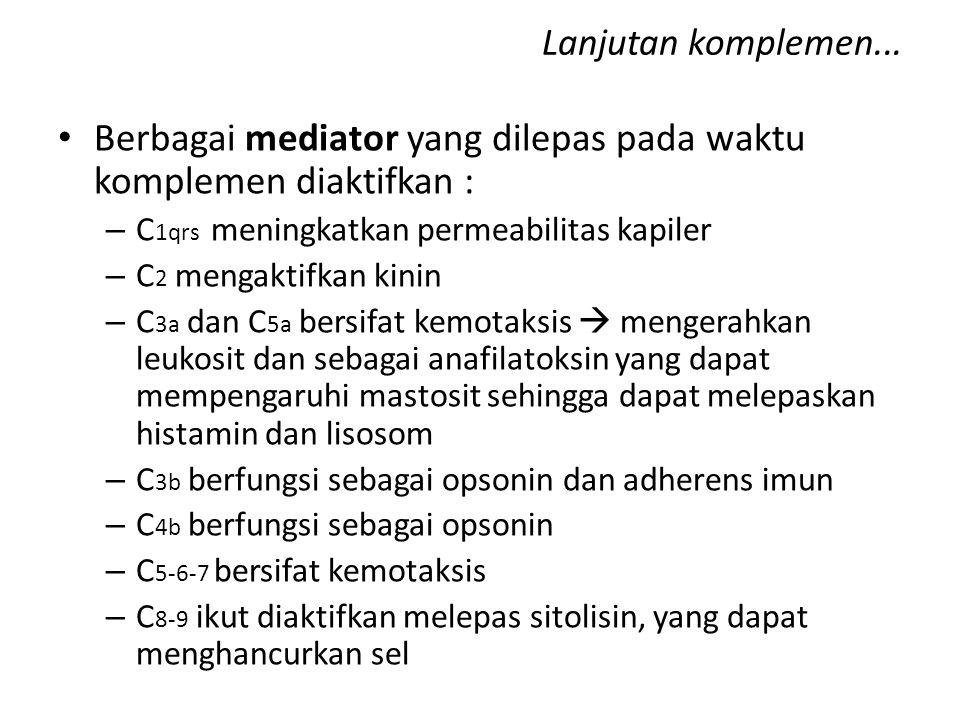 Lanjutan komplemen... Berbagai mediator yang dilepas pada waktu komplemen diaktifkan : – C 1qrs meningkatkan permeabilitas kapiler – C 2 mengaktifkan
