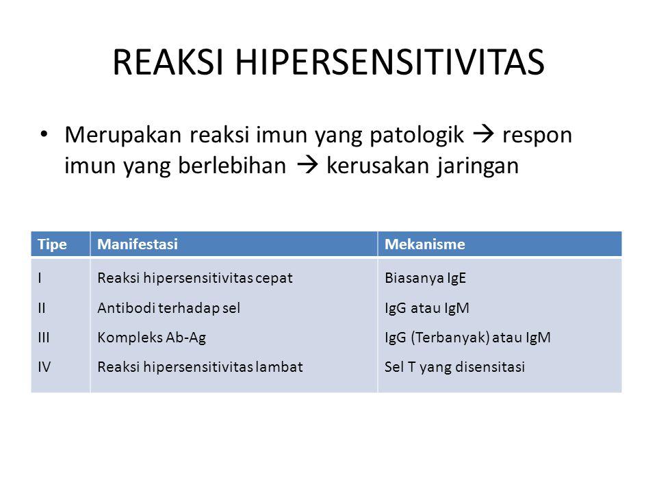 REAKSI HIPERSENSITIVITAS Merupakan reaksi imun yang patologik  respon imun yang berlebihan  kerusakan jaringan TipeManifestasiMekanisme I II III IV Reaksi hipersensitivitas cepat Antibodi terhadap sel Kompleks Ab-Ag Reaksi hipersensitivitas lambat Biasanya IgE IgG atau IgM IgG (Terbanyak) atau IgM Sel T yang disensitasi
